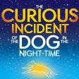 Curious Incident of the Dog in the Night Time Broadway Play Tickets