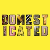 Domesticated Off Broadway Play Tickets