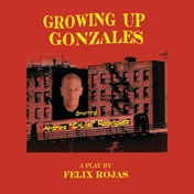Growing Up Gonzales Play Off Broadway Show Tickets