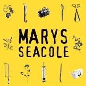 Marys Seacole LCT3 Off Broadway Show Tickets
