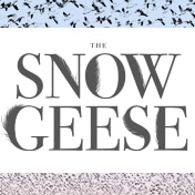 The Snow Geese Broadway Play Tickets